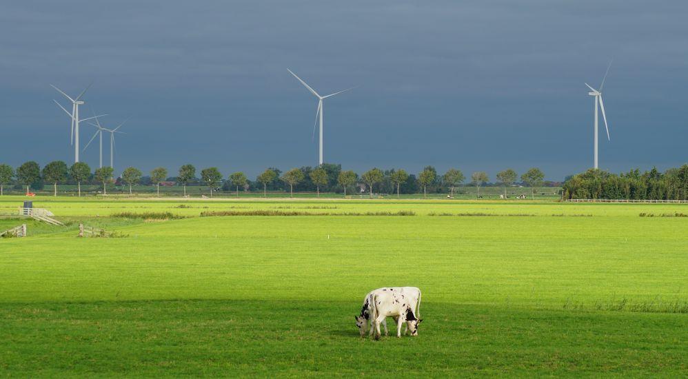 Hoe zorg je ervoor dat je groene energie laadt in de elektrische auto?